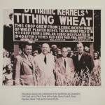 dynamic-kernels-tithing-wheat-henry-ford